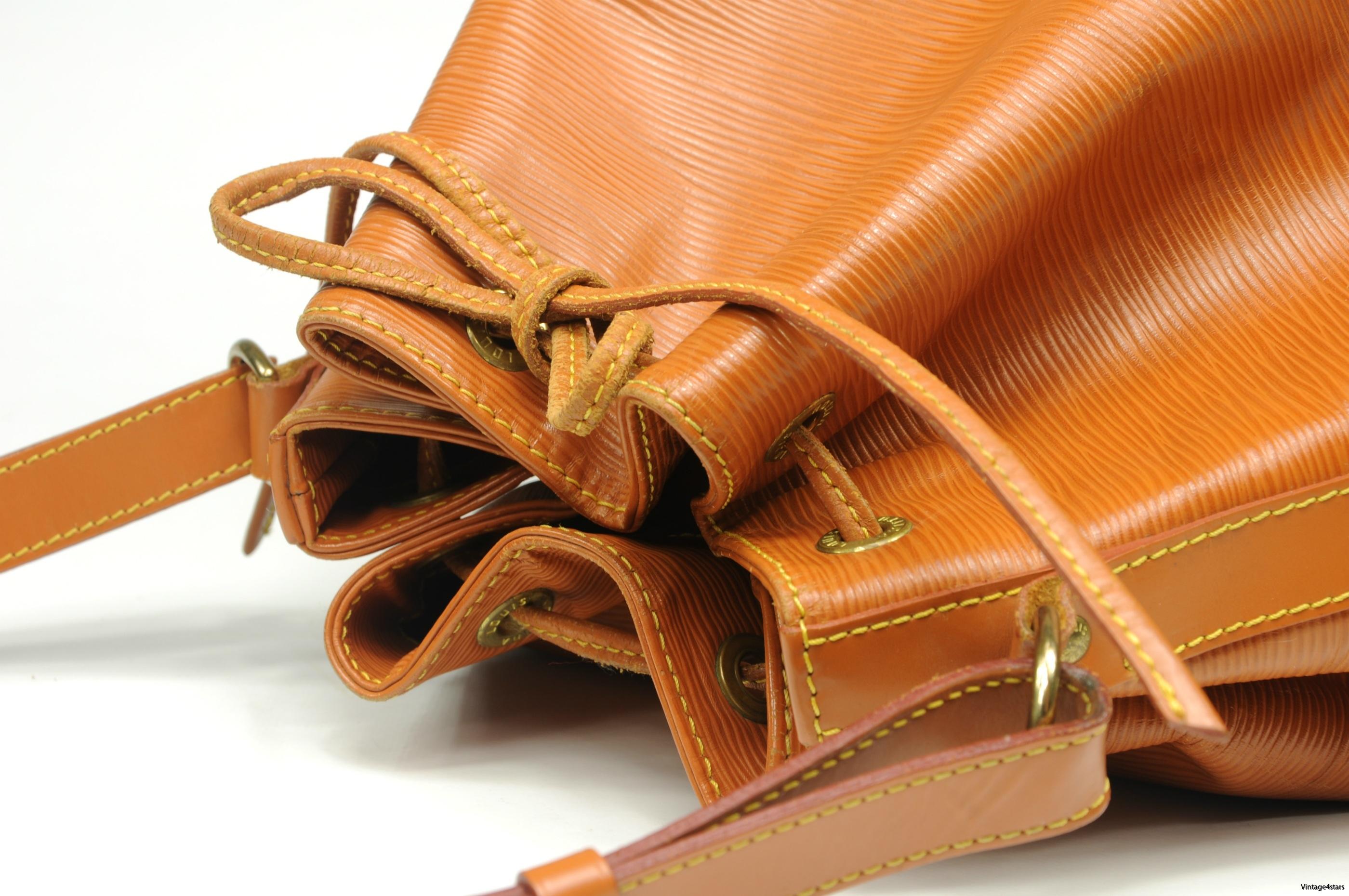 Louis Vuitton Noe  Epi Chipango 4
