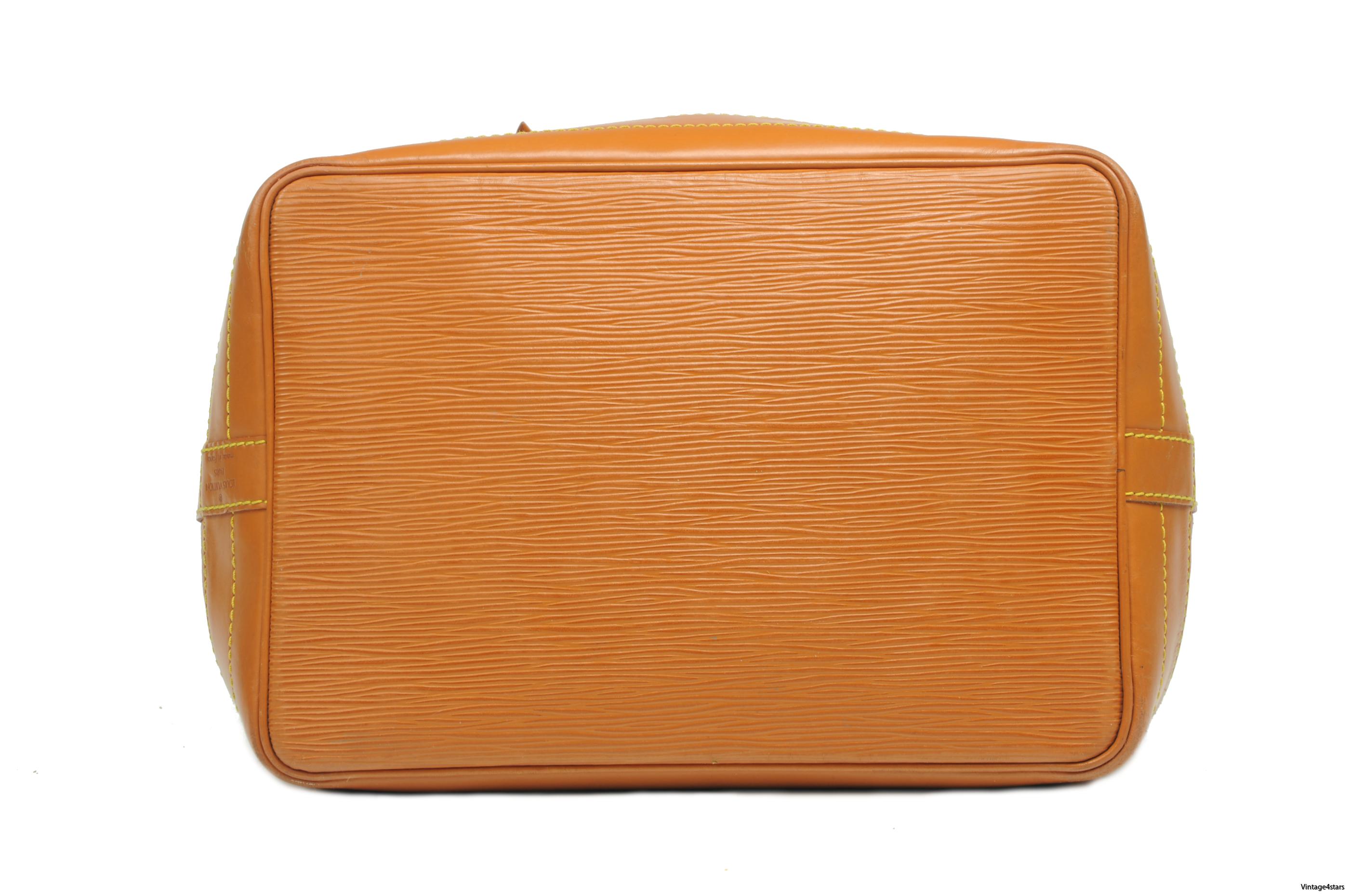 Louis Vuitton Noe  Epi Chipango 5