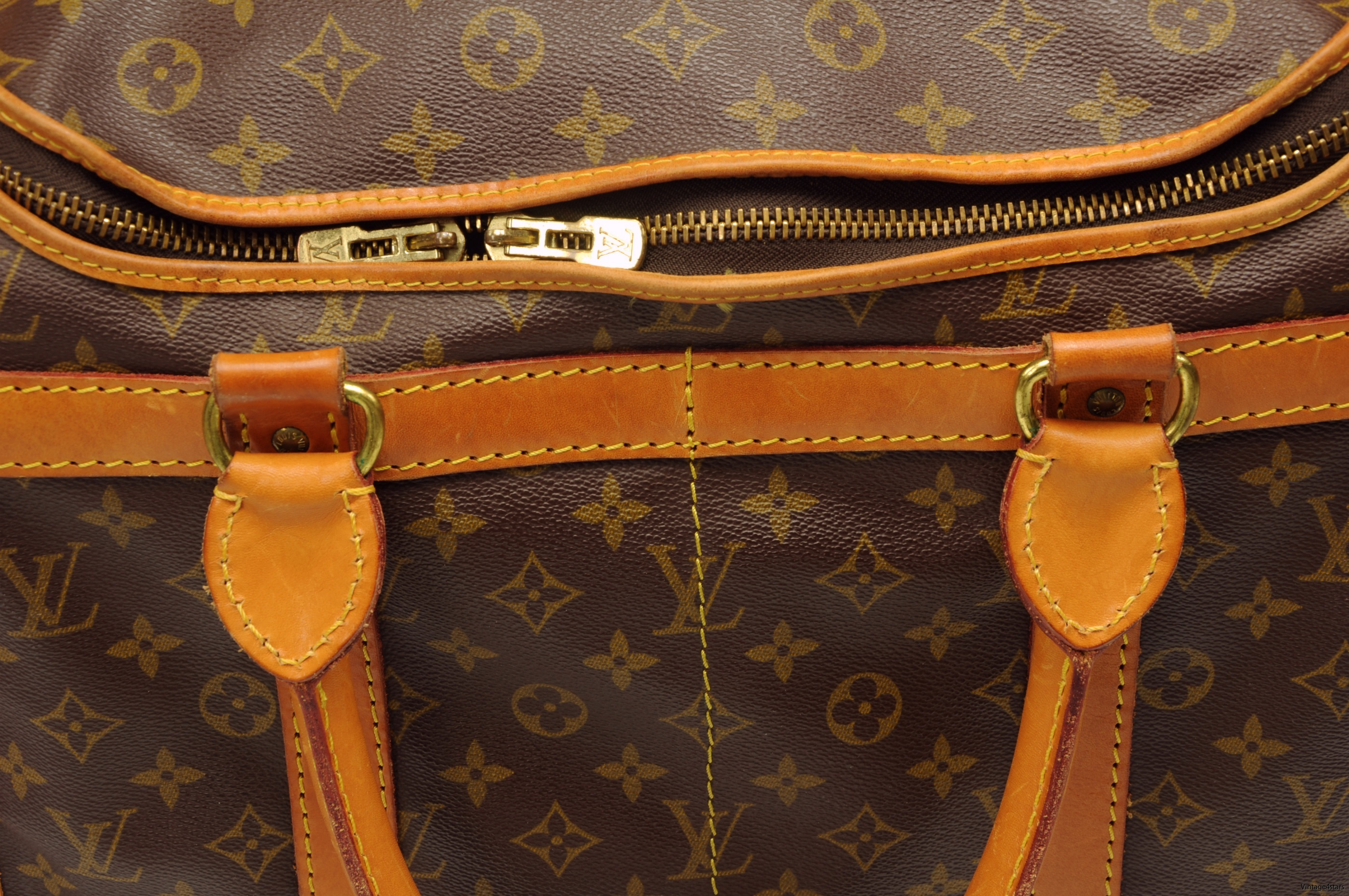 Louis Vuitton Sac Chien 40 13