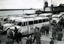 Vita bussarna på väg med fritagna fångar till Sverige. Foto Riksarkivet