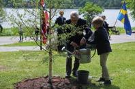 Plantering av minnesträd av veteranpolissoldaten Thor Hofsbro och Kasper Eikli Rygh. Foto Georg Kristiansen.