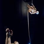 Vadå -  Cirkus Saga