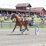 Cat´s Klondike Äg & Tr Lars-Einar Larsson