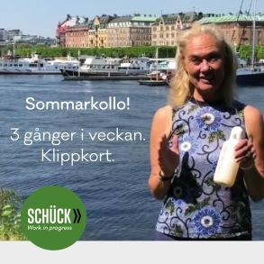 Sommarkollo med Cathrine Schück (Klippkort) - Sommarkollo med Cathrine Schück