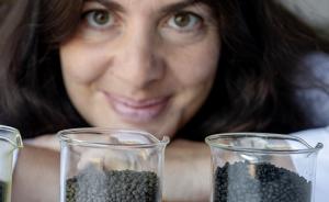 Katerina Kousoulaki i Nofima har produsert fiskefôr med 30 % biomasse frå mikroalgar – og den blir grøn. Foto: Helge Skodvin, Nofima. 11