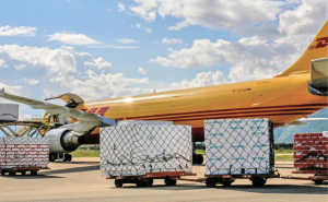 Bølgepappkasser: Kasser av bølgepapp med kongekrabbe lastes ombord i fly til Lakselv. Kassene, til høyre på bildet, flys til Oslo og omlastes der for videre flyfrakt til markedene. Foto: DS Smith