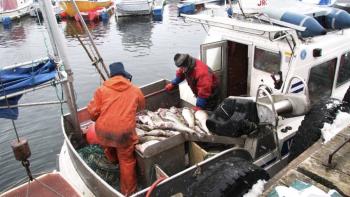Fisken som sikrer norsk velferd