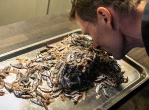 NY DELIKATESSE: Havforsker Arne Duinker studerer lysprikkfisk hentet opp fra dypet. Han er en av de aller første som har smakt på fisken som kan bli et nytt innslag på middagsbordet. Foto: Erlend A. L