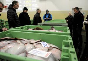 Halvparten av fisken som selges på fiskeauksjonen i Hirtshals er rødspette. I Nordsjøen har det vært en sterk økning i rødspettebestanden. Gytebestanden har økt fra litt over 200.000 tonn i 2000 til o