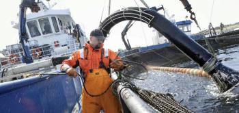 BADEBEHANDLING: Avlusing av oppdrettslokalitet med brønnbåt i Trøndelag for noen år siden. NFD har hatt på høring et forslag til forskriftsendring om badebehandling med legemidler av laks mot lakselus