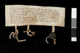 Det bevarade medeltidsbrevet där Bngtemölla med dåtidens stavning frangår  på femte raden strax efter mitten. (Källa: Riksarkivet Sverige)