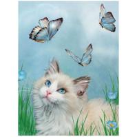 Kort 3D - Katt Blå Fjärilar
