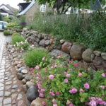 Carlberg Trädgård