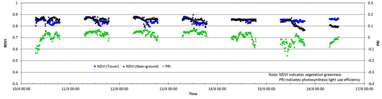Första veckans beräknade värden på NDVI och PRI i granungskog på Nybygget i Asa. Om du klickar på bilden visas hela veckans diagram. Av Ola Langvall