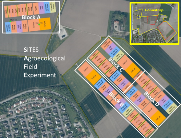 Figur 1. The SITES Agroecological Field Experiment (SAFE) with the four agroecosystems which are replicated in four blocks (A-D).