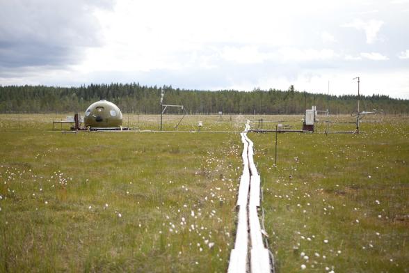 Degerö stormyr utanför Vindeln i Västerbotten. Alla mätningarna av kvicksilvergas gjordes i direkt anslutning till den gröna kupolen, men just denna mätutrustning syns inte på fotot. Fotograf: Jenny Svennås-Gillner, SLU.