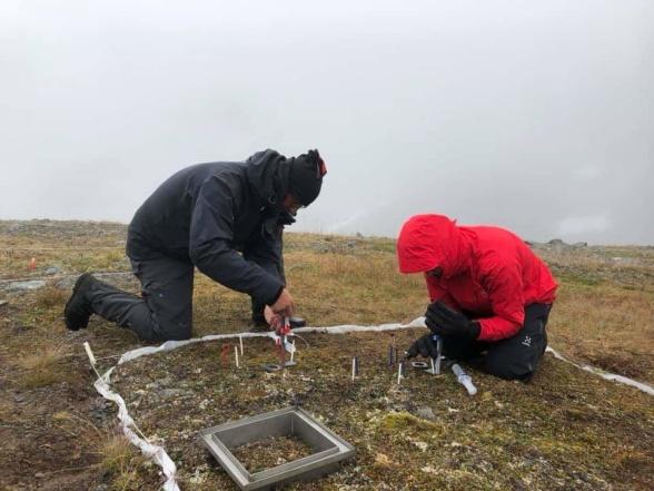 Forskare från Göteborgs universitet genomför en inmärkningsstudie med kväveisotoper för att öka förståelse av vegetationstionförändringar kan på verka kvävecykeln. Foto: Gunhild Rosqvist.