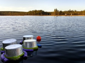 The CO2 sensors being prepared at Svartberget are placed in chambers on the lake as part of the SITES Water greenhouse gas program, which starts once the ice is gone. Photo: Blaize Denfeld.