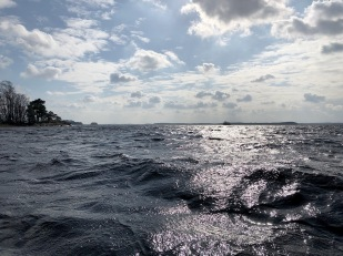 Location of the deployed pressure gauge south of Bolmsö island.  The pressure gauge was installed at a water depth of approximate 1 m. Photo: Clemens Klante.