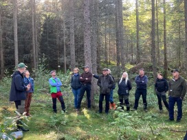 Mikael Andersson (on the left) is hosting one of the groups in a 29-year-old stand of Hybrid larch. Photo: Kristina Wallertz.