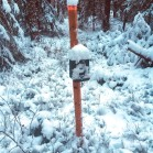 One of the wildlife cameras in the camera trap system. Photo: Gunnar Jansson.