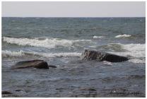 Havet i rörelse - Ringenäs 2016 R L
