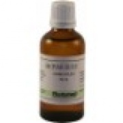 Hepar Sulf Homeoplex 50 ml