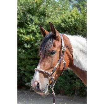 Grimma -Lesley - Mörkbrun/sand Ponny