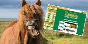 Hästnet använder jag mest för att leta häst!