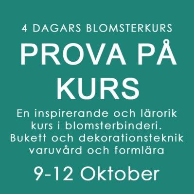 PROVA PÅ KURS / 9 - 12 OKT -