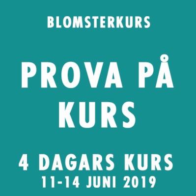 PROVA PÅ KURS 11-14 JUNI -