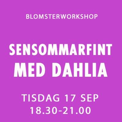 SENSOMMARFINT MED DAHLIA / 17 SEP -