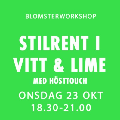 STILRENT I VITT & LIME / 23 OKT -