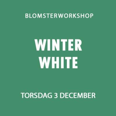 WINTER WHITE / 3 DECEMBER -