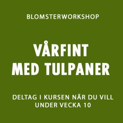 VÅRFINT MED TULPANER V.10 -