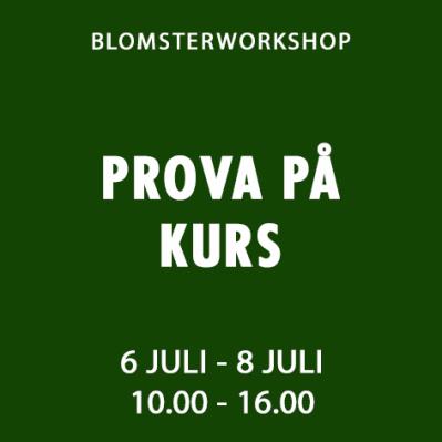PROVA PÅ KURS / 6 - 8 JULI