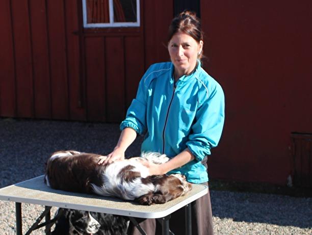 Friskvård av hundar i Varberg
