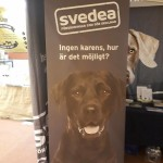 Svedea Djurförsäkringar