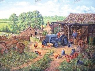 VYKORT FERGUSON - YOUNG FARMER