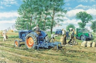 VYKORT FORDSON - LIFTING THE CROP