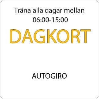 Dagkort - Autogiro - 12-mån Sandviken, Allkortet