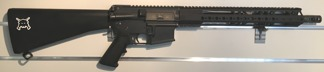 Systema 08 PTW DMR