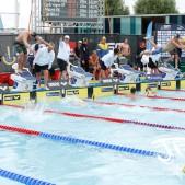 Simning sm veckan 2018 (38 av 55)