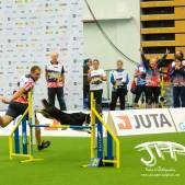 Large Jump (6 av 90)