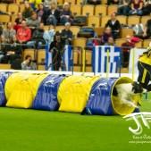 Large Jump (12 av 90)