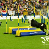Large Jump (13 av 90)