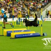 Large Jump (15 av 90)