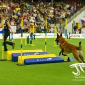 Large Jump (16 av 90)