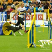 Large Jump (20 av 90)