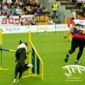 Large Jump (27 av 90)